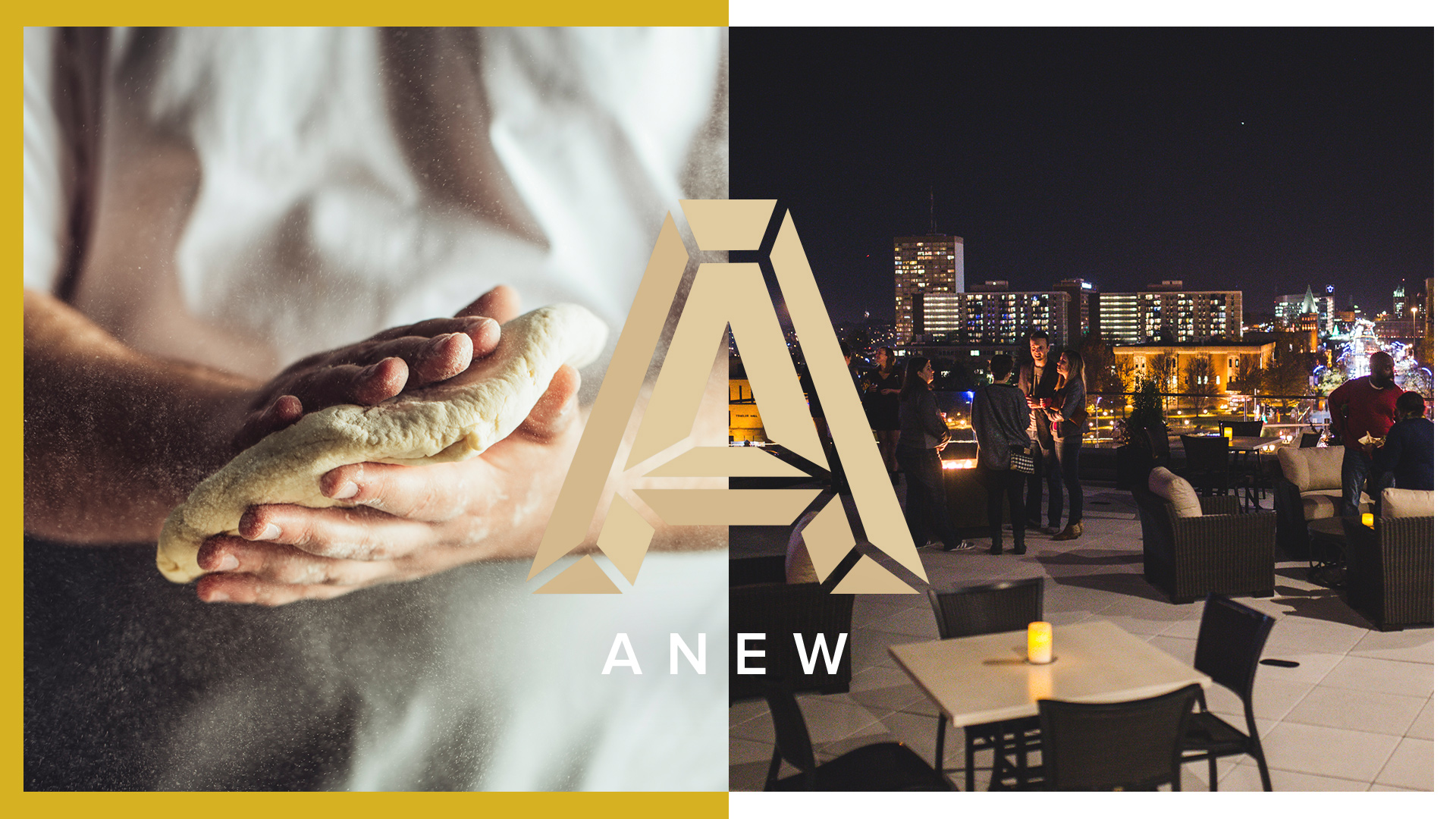 Anew Branding and Website Design