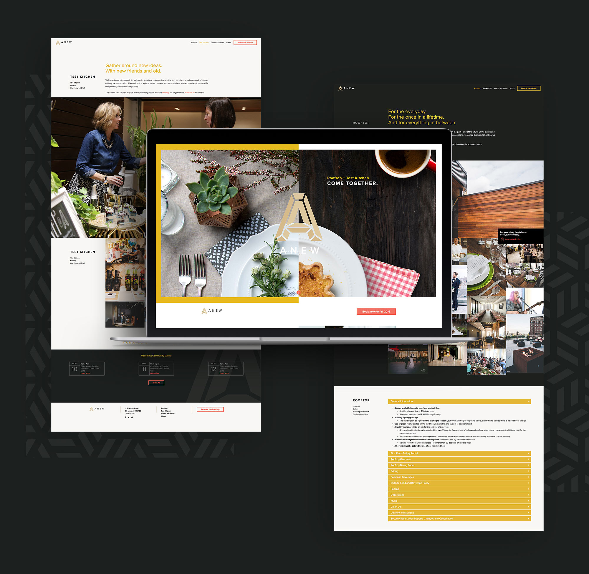 Website design for Anew St. Louis